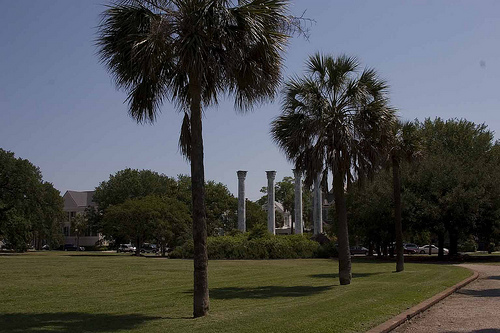 Charleston Parks Conservancy – What, Why and How to Get Involved